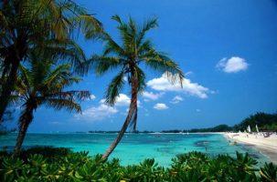 Нова година в Доминиканската република: от 1620 евро /с полет, такси, 7 нощувки All Inclusive/!!