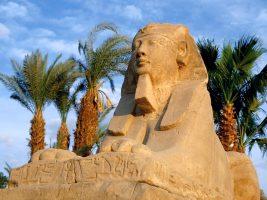 Почивка в Египет 2017! Топ оферта от 1200 лв /вкл. полет, такси+багаж, 7 нощувки All Inclusive в хотел 4*/!!!