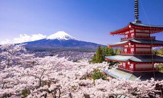 Екскурзия в Южна Корея и Япония, май 2018 г!!!