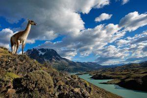 Екскурзия в Чили и Перу – по пътя на виното и инките!!!