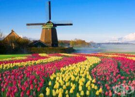 Предколедна Холандия и светлините на Амстердам!