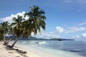 Нова Година в Доминикана – Плая Баваро, 2020!!